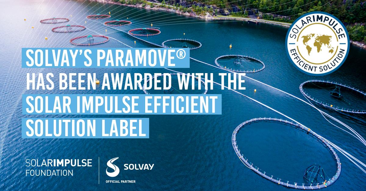 Paramove awarded Solar impulse Efficient solution label