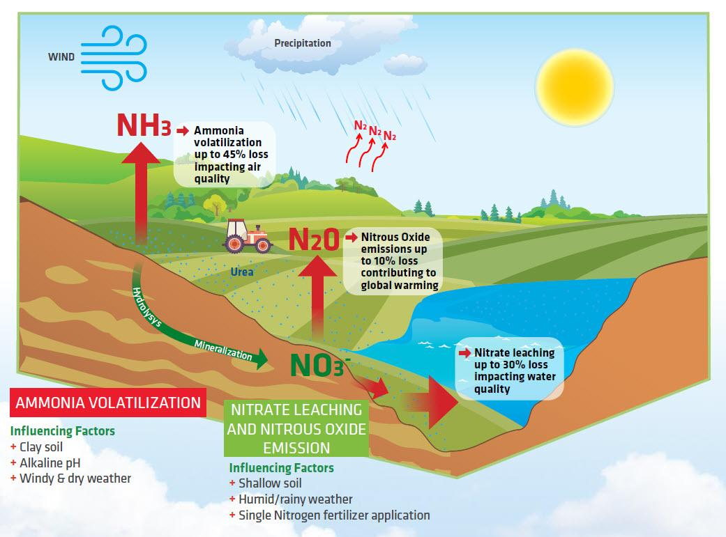 N Protect™ Range - Enhanced Efficiency Fertilizer Additives