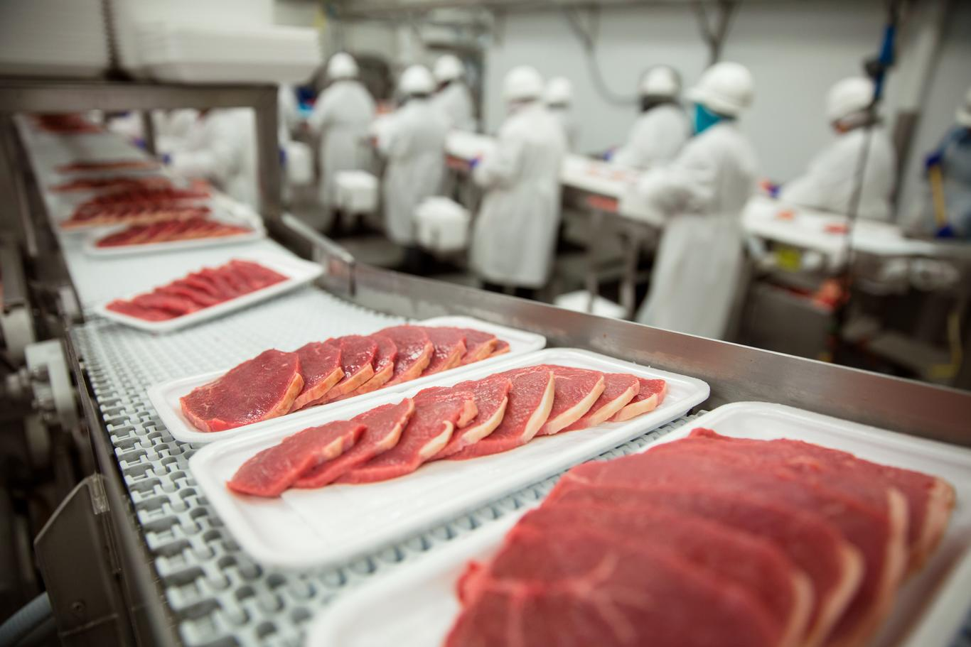 Slices of thin meat for packaging at industrial meat factory plant